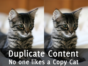 SEO Issues with Duplicate Content: Htaccess, Robots and URLs